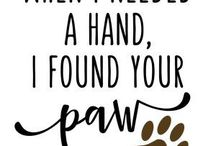 Canine Quotes / Canine quotes for the dog lover in all of us