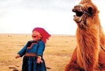 Hehehahas / funny hunny / by Rachel Lee