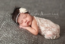 Baby Photography / by Ashley Bailey