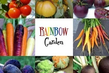 Backyard Harvest / Grow food not Lawns / by Quantella Smith