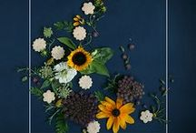 Cookies & Flora Project / Cookies and flowers by Whimsy & Spice