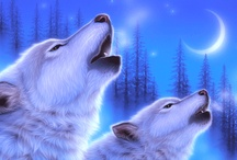 Wolves Spirit / by Kathy Olson