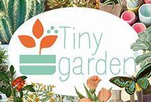 Tiny Garden / Jardin décoration