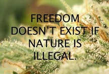 Legalize  / federally legalize cannabis <3 we are not free when there are laws against a plant  / by Sarah Cole