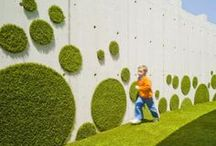 Living Walls / Creating your own Living Walls is a smart, space saving idea.