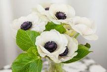Flowers / Irresistible floral arrangements. / by StyleCarrot • Marni Katz