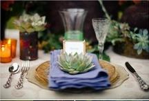 Gather / Dinner parties, picnics, decorations, etc.