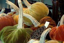 Halloween ~ Fall ~ Autumn ~ Thanksgiving / Halloween.. Fall... Pumpkins... Thanksgiving food / by Fern Chapple