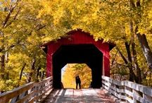 Covered Bridges / by Beverly Terry