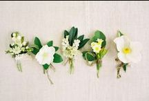 Boutonnieres / by Cori Cook
