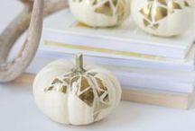 Fall / Samhain / Halloween