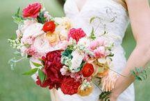 Portfolio {Cori Cook Floral Design} / by Cori Cook