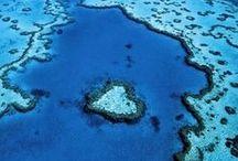 World | Australia + Pacific