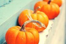 Fall + Thanksgiving | Orange