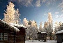 Winter + Christmas | Brown + White