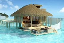 Will Someone Please Take Me Here?