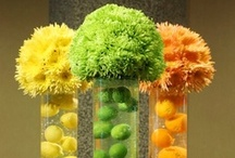 Citrus Creations / Mouth Watering Citrus Creations