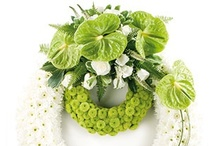 Sympathy Offerings / Stunning Designs to send to your Loved Ones and Friends for Sympathy and memorial Services. http://www.norfolkflorist.com/occasions/sympathy-flowers/