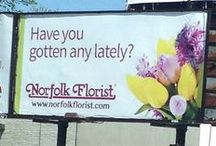 """""""What's Happening"""" / What's Happening This Month at Norfolk Florist and the Surrounding Cities"""