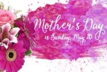 Mom's the Best / Mother's Day is May 13th.  Show your mother just how appreciative you are for all of the things she has done in your life. It can be hard to find the perfect gift that encompasses everything you'd like to say, but, Norfolk Florist can help deliver a bright and beautiful floral gift right to her door to make her day extra special. http://www.norfolkflorist.com/occasions/mothers-day-flowers-virginia-beach-va/