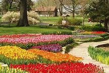 Gardens We Envy