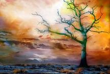 Trees - Art