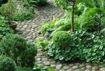 tuin, groente kweken / garden, lovely little sitting spots and some vegatables