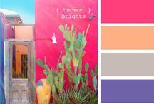 Color My Fancy / by Sara Lingerman