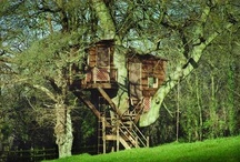 Treehouses / Unique Treehouses / by Barbara Blackwood