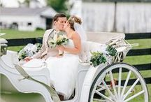 Wedding:  All About The Outside