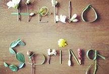 // Spring.