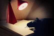 Aus dem Leben einer Bücherratte. Weisheiten und Momente. / Aus dem Leben einer Bücherratte.