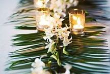 Tropical Winter Wedding Ideas / Tropical winter wedding vibes...12/16/17