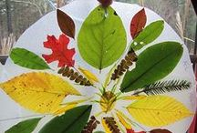 Nature Crafts / Nature craft ideas and activities which parents and teachers can use with their kids and students.
