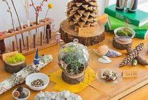 Nature Table Ideas / Nature table ideas for teachers and parents. Includes seasonal ideas.
