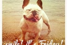 Friday/Weekend Fun / by Tiffany Morez Bayona