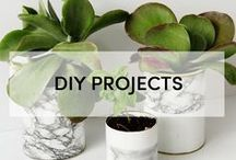 + DIY DREAMS / My favorite DIY projects for your house and home.