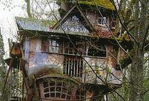 Tree Houses / Did you ever live in a tree? Even for just a part of the day? / by Ann C. Holt