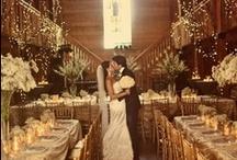 Wedding / by Megan Voth
