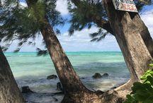 Cayman Island / Rum point Cayman Island