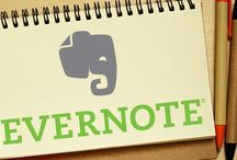Evernote / Always organized, ever lost.