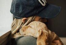 Pup | Pets