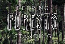 We ♥ Rainforests / by Rainforest Alliance