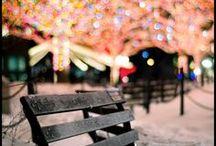 Christmas / by Lynn Rhee