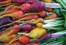 Heirloom Vegetables | Heirloom Seeds / and some irresistable vintage packaging :)