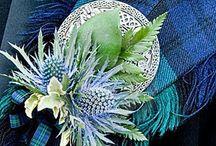 All Things Alba/Scotland / Dedicated to my Ballantyne/Blanton/Hume/Home/Duncan Scottish Roots