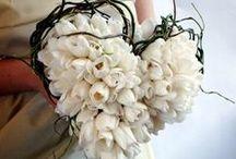 Dream Wedding....