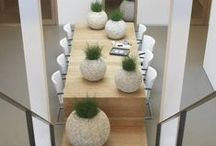 Book: XL Plants around / Plants and pots for the interior and also for outside www.kiplant.com