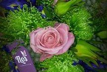 Kvetinárstva FLOS