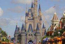 Fine. I will make a Disney board already. / by Whitney Fasig